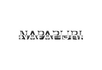 https://ontheairdrones.com/wp-content/uploads/2020/03/15logo-nap.png